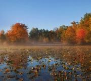Landscape - First place: Carol Duffy