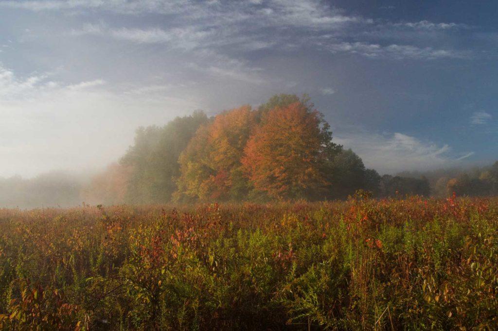 Winning Landscape photo by Larry West