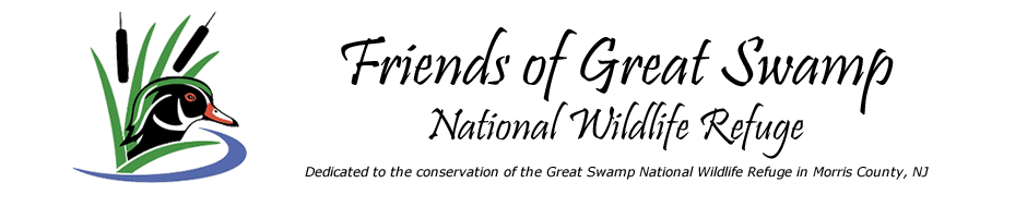 Friends of Great Swamp
